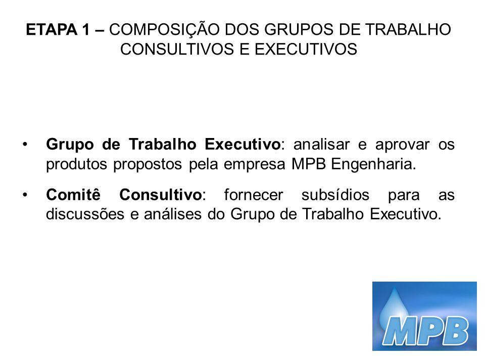 ETAPA 1 – COMPOSIÇÃO DOS GRUPOS DE TRABALHO CONSULTIVOS E EXECUTIVOS Grupo de Trabalho Executivo: analisar e aprovar os produtos propostos pela empres