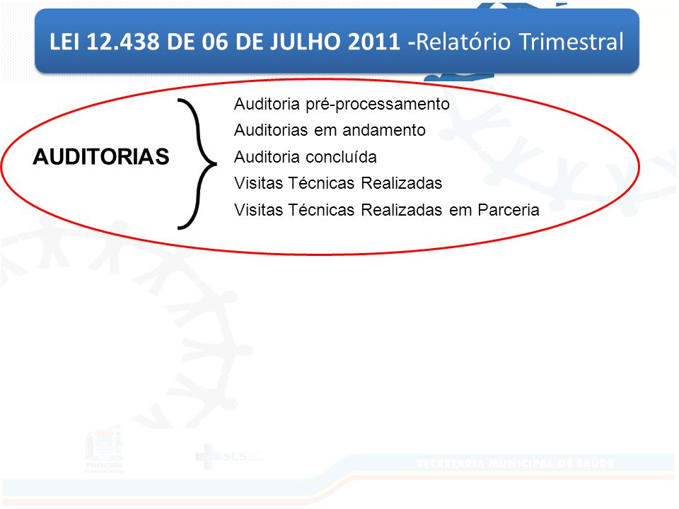 LEI 12.438 DE 06 DE JULHO 2011 -Relatório Trimestral Auditoria pré-processamento Auditorias em andamento Auditoria concluída Visitas Técnicas Realizadas Visitas Técnicas Realizadas em Parceria AUDITORIAS