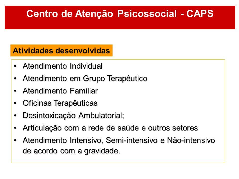 Centro de Atenção Psicossocial - CAPS Atividades desenvolvidas Atendimento IndividualAtendimento Individual Atendimento em Grupo TerapêuticoAtendiment