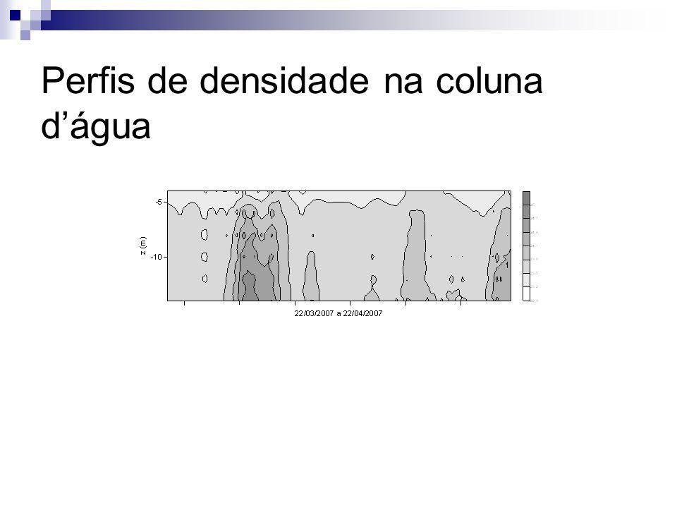 Perfis de densidade na coluna dágua