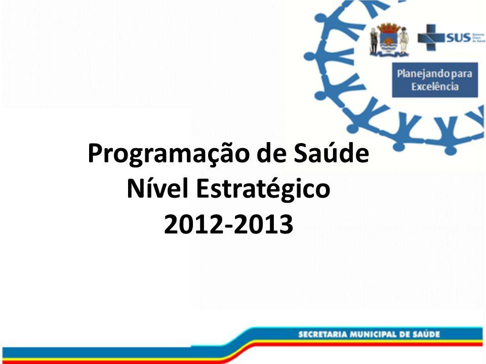 Programação de Saúde Nível Estratégico 2012-2013