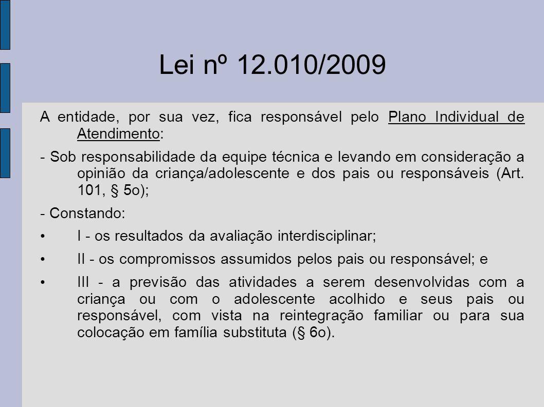 Lei nº 12.010/2009 A entidade, por sua vez, fica responsável pelo Plano Individual de Atendimento: - Sob responsabilidade da equipe técnica e levando