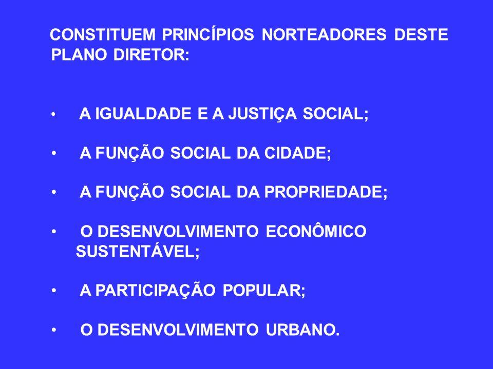 CONSTITUEM PRINCÍPIOS NORTEADORES DESTE PLANO DIRETOR: A IGUALDADE E A JUSTIÇA SOCIAL; A FUNÇÃO SOCIAL DA CIDADE; A FUNÇÃO SOCIAL DA PROPRIEDADE; O DESENVOLVIMENTO ECONÔMICO SUSTENTÁVEL; A PARTICIPAÇÃO POPULAR; O DESENVOLVIMENTO URBANO.