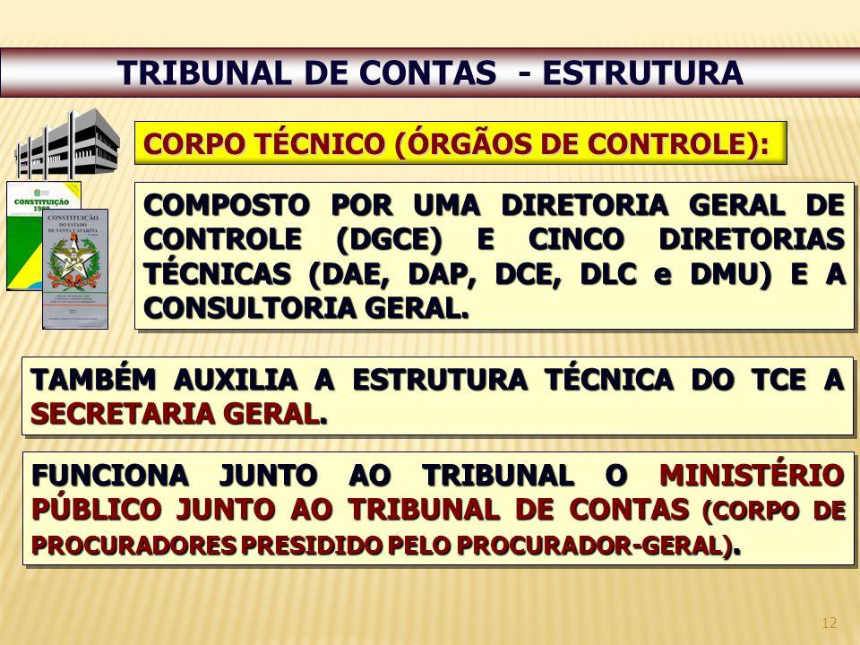 12 TRIBUNAL DE CONTAS - ESTRUTURA COMPOSTO POR UMA DIRETORIA GERAL DE CONTROLE (DGCE) E CINCO DIRETORIAS TÉCNICAS (DAE, DAP, DCE, DLC e DMU) E A CONSULTORIA GERAL.