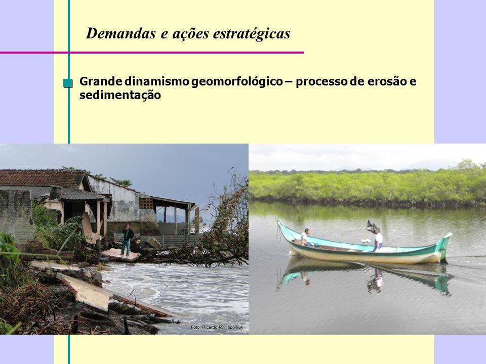 Demandas e ações estratégicas Grande dinamismo geomorfológico – processo de erosão e sedimentação