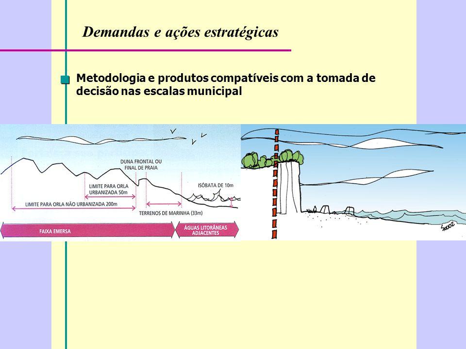 Demandas e ações estratégicas Metodologia e produtos compatíveis com a tomada de decisão nas escalas municipal