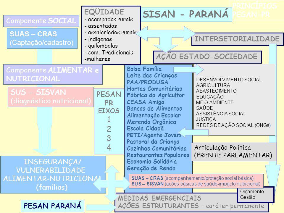 SISAN - PARANÁ PRINCÍPIOS PESAN-PR Componente SOCIAL Bolsa Família Leite das Crianças PAA/PRODUSA Hortas Comunitárias Fábrica do Agricultor CEASA Amig