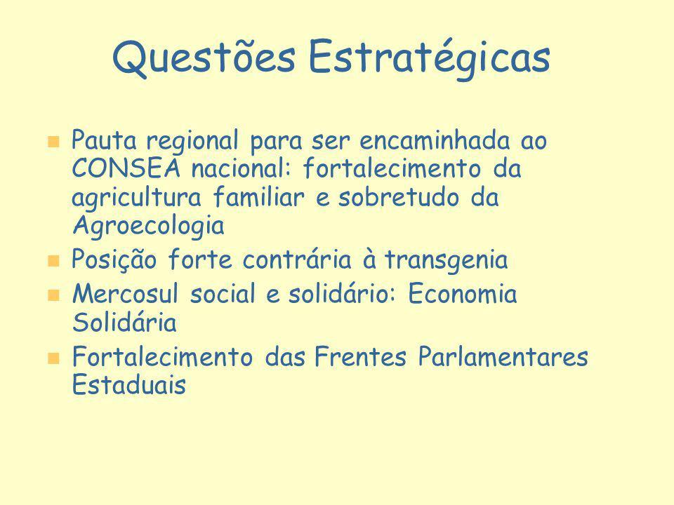 Questões Estratégicas n n Pauta regional para ser encaminhada ao CONSEA nacional: fortalecimento da agricultura familiar e sobretudo da Agroecologia n