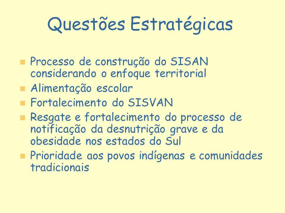 Questões Estratégicas n n Processo de construção do SISAN considerando o enfoque territorial n n Alimentação escolar n n Fortalecimento do SISVAN n n