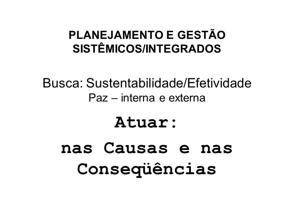 PLANEJAMENTO E GESTÃO SISTÊMICOS/INTEGRADOS Busca: Sustentabilidade/Efetividade Paz – interna e externa Atuar: nas Causas e nas Conseqüências