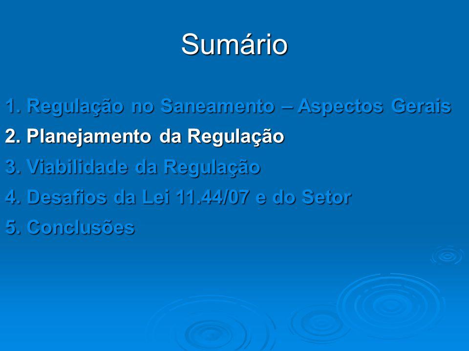 Sumário 1. Regulação no Saneamento – Aspectos Gerais 2. Planejamento da Regulação 3. Viabilidade da Regulação 4. Desafios da Lei 11.44/07 e do Setor 5