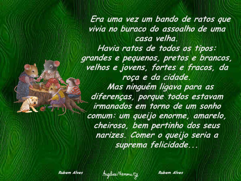 O SONHO DOS RATOS (nova velha fábula) Rubem Alves