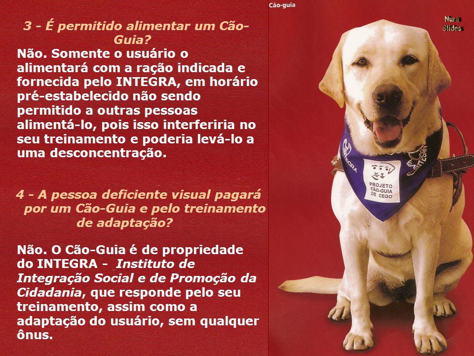 1 - Qual é o trabalho do Cão-Guia? O cão é altamente condicionado para se desviar de obstáculos fixos, móveis, altos e baixos. Ele recebe comandos de