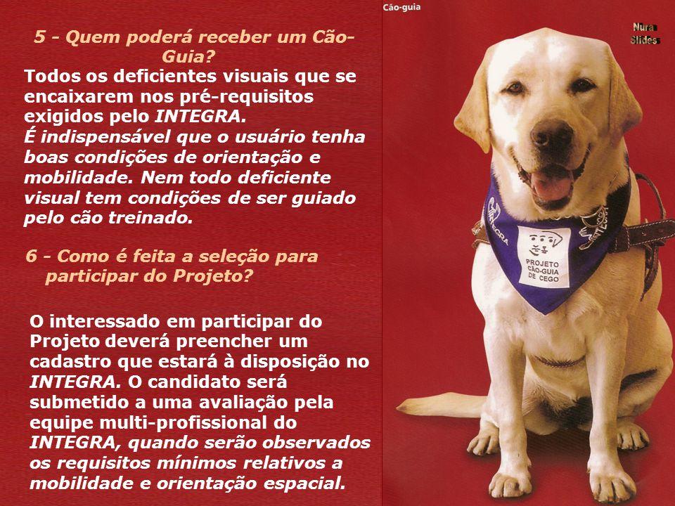 5 - Quem poderá receber um Cão- Guia.