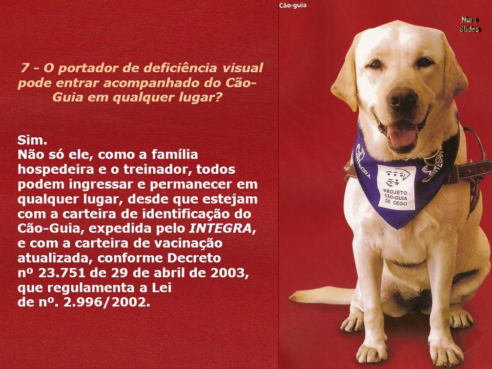5 - Quem poderá receber um Cão- Guia? Todos os deficientes visuais que se encaixarem nos pré-requisitos exigidos pelo INTEGRA. É indispensável que o u