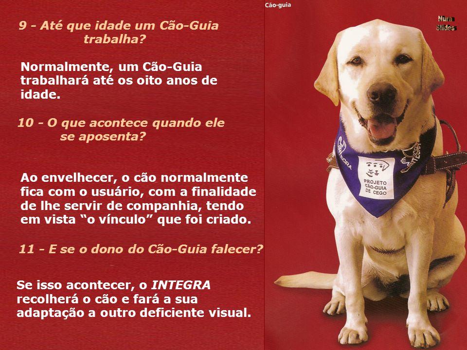 8 - O portador de deficiência visual que receber o Cão-Guia precisa ter recursos financeiros para cuidar dele? Não. O INTEGRA disponibiliza um médico