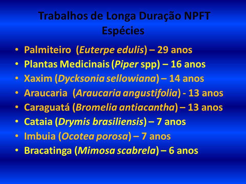 Trabalhos de Longa Duração NPFT Espécies Palmiteiro (Euterpe edulis) – 29 anos Plantas Medicinais (Piper spp) – 16 anos Xaxim (Dycksonia sellowiana) –