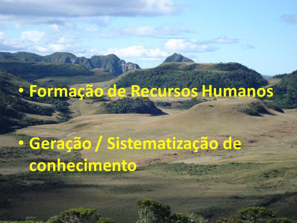 Formação de Recursos Humanos Geração / Sistematização de conhecimento
