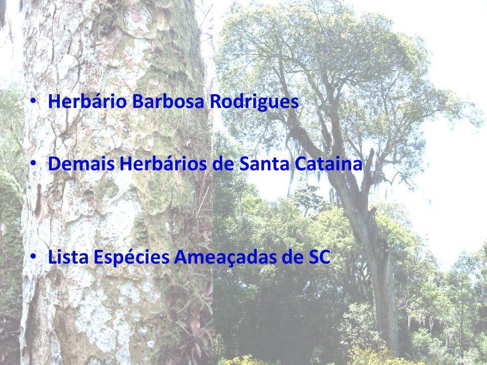 Herbário Barbosa Rodrigues Demais Herbários de Santa Cataina Lista Espécies Ameaçadas de SC