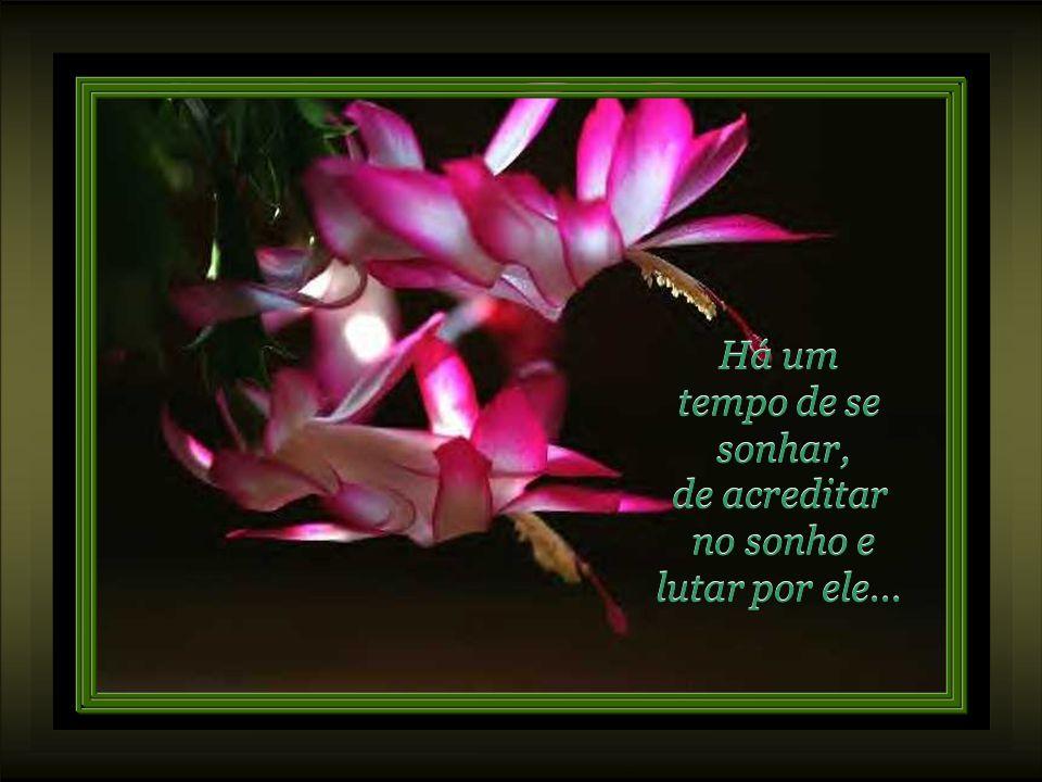 Para tudo há um tempo em nossa vida... Para tudo há um tempo em nossa vida... E a grande sabedoria é viver cada tempo com sua realidade, aceitando o q