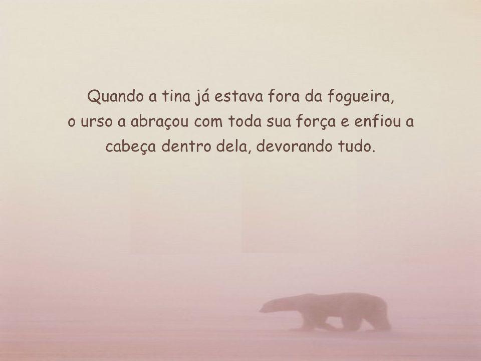 Tenha a coragem e a visão que o urso não teve.