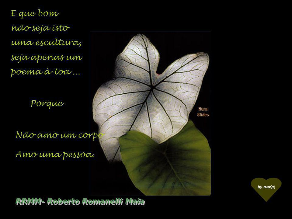 Não amo o volume dos seios, Amo RRMM- Roberto Romanelli Maia O aconchego!