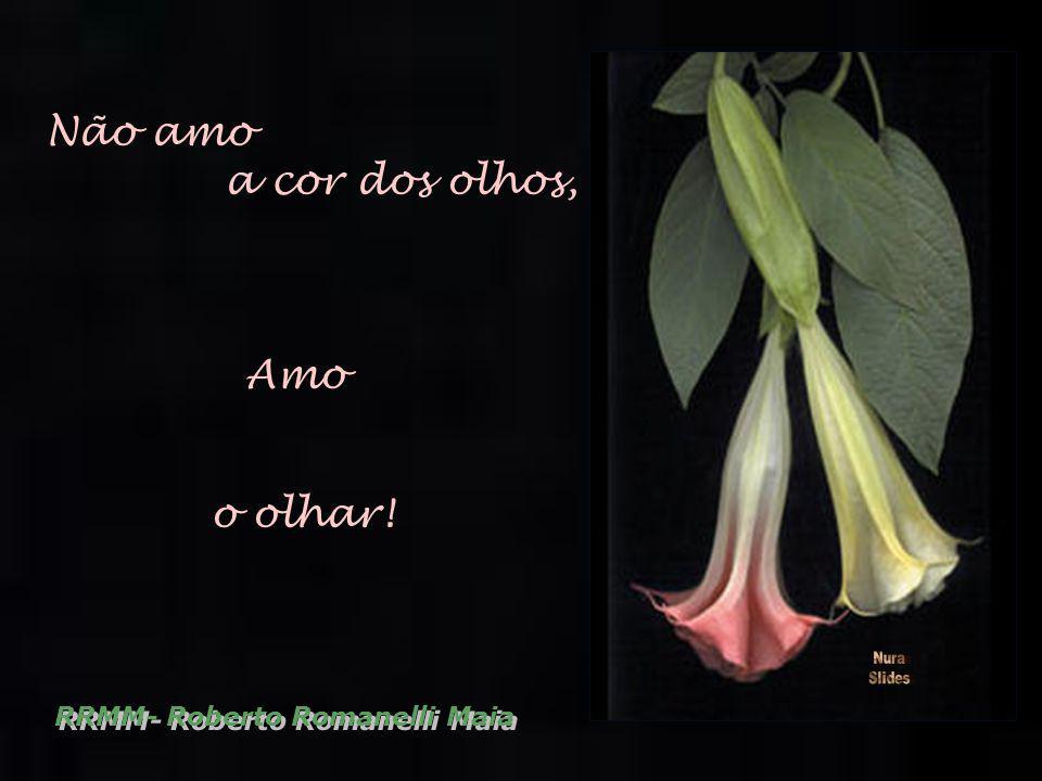 Não amo a cor dos olhos, Amo o olhar! RRMM- Roberto Romanelli Maia