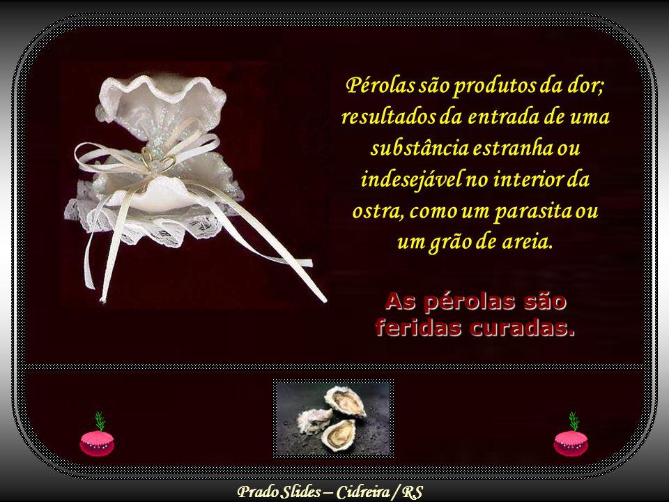 Prado Slides – Cidreira / RS Pérolas são produtos da dor; resultados da entrada de uma substância estranha ou indesejável no interior da ostra, como um parasita ou um grão de areia.