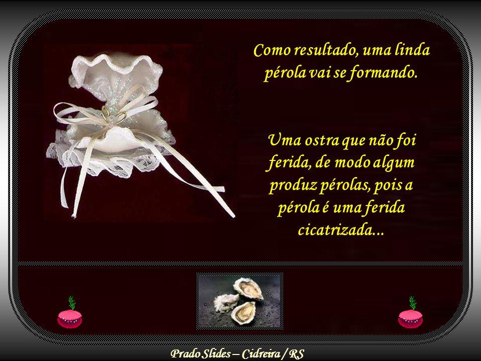 Prado Slides – Cidreira / RS Assim, na prática, o que vemos são muitas Ostras Vazias , não porque não tenham sido feridas, mas porque não souberam perdoar, compreender e transformar a dor em amor.