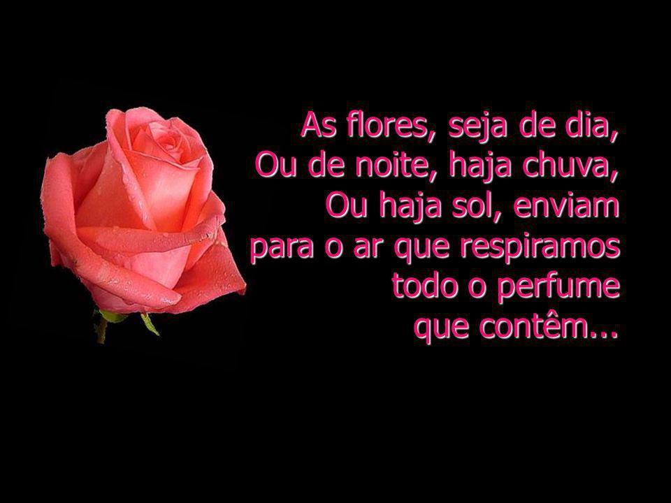 Dirija a sua vida, seja nas tristezas, seja nas alegrias, sempre derramando pétalas, tal como as flores.