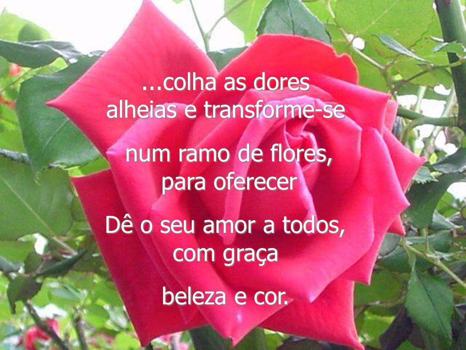 Se colhida e dedicada a alguém significa amor. Seja como uma flor, haja em estado de graça, Espalhe A sua beleza mesmo onde ela não existe...