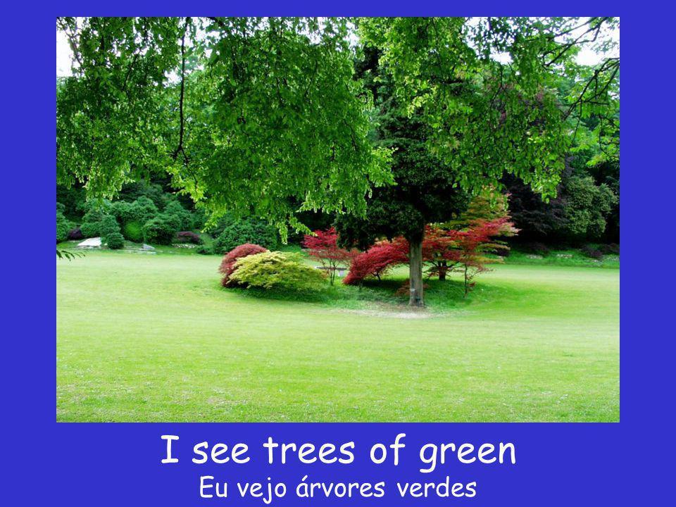 I see trees of green Eu vejo árvores verdes