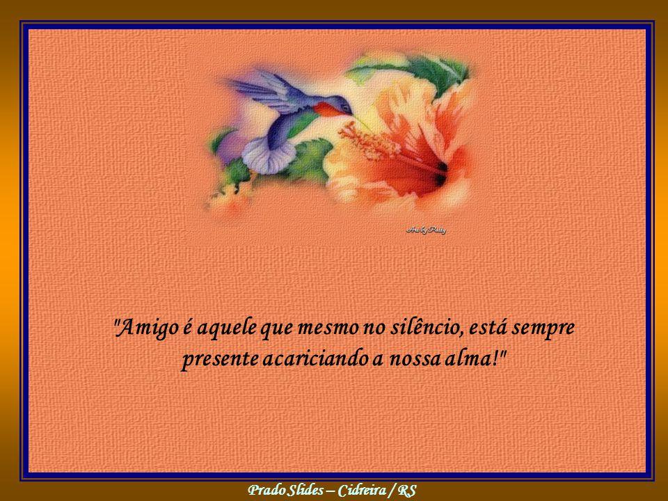 Amigo é aquele que mesmo no silêncio, está sempre presente acariciando a nossa alma!