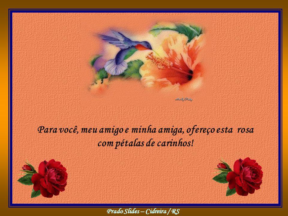 Prado Slides – Cidreira / RS Para você, meu amigo e minha amiga, ofereço esta rosa com pétalas de carinhos!