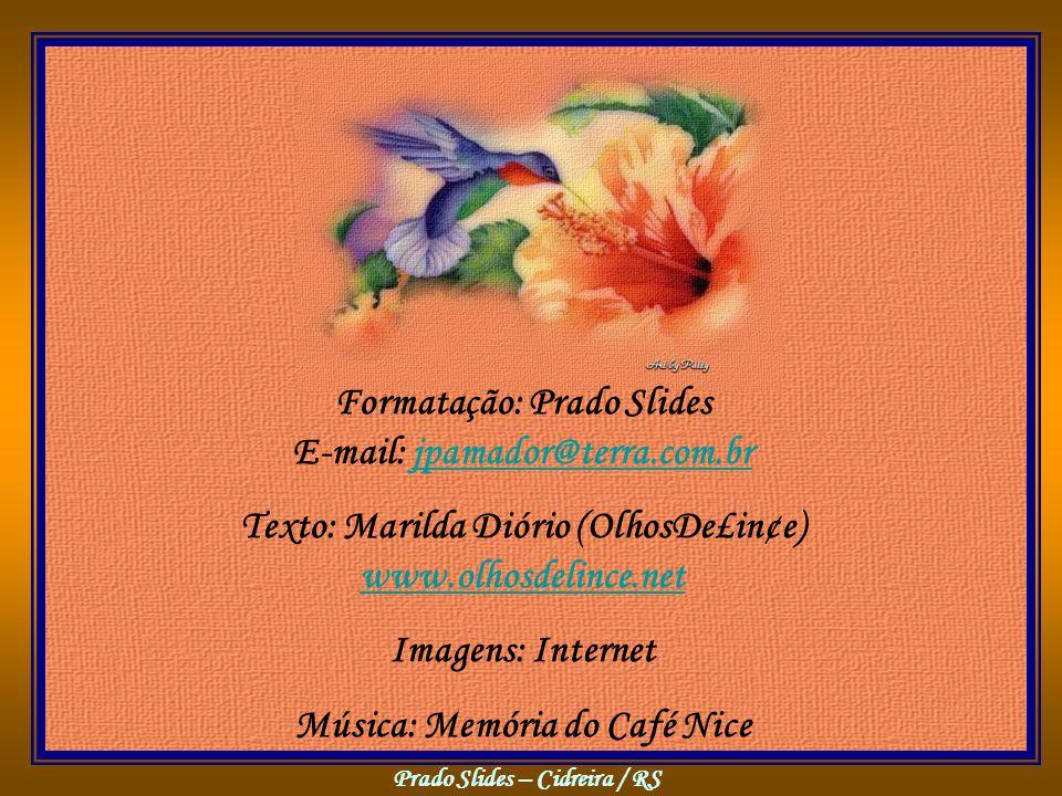 Prado Slides – Cidreira / RS Formatação: Prado Slides E-mail: jpamador@terra.com.brjpamador@terra.com.br Texto: Marilda Diório (OlhosDe£in¢e) www.olhosdelince.net www.olhosdelince.net Imagens: Internet Música: Memória do Café Nice