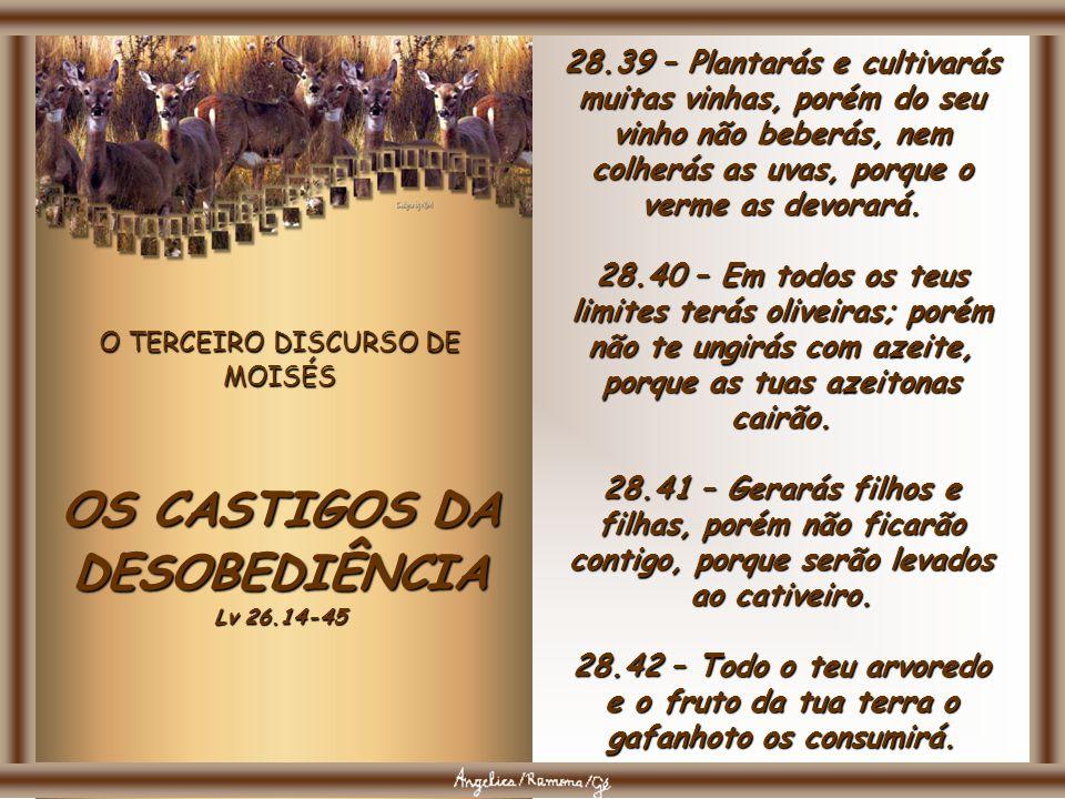 O TERCEIRO DISCURSO DE MOISÉS OS CASTIGOS DA DESOBEDIÊNCIA Lv 26.14-45 28.36 – O SENHOR te levará e o teu rei que tiveres constituído sobre ti a uma g