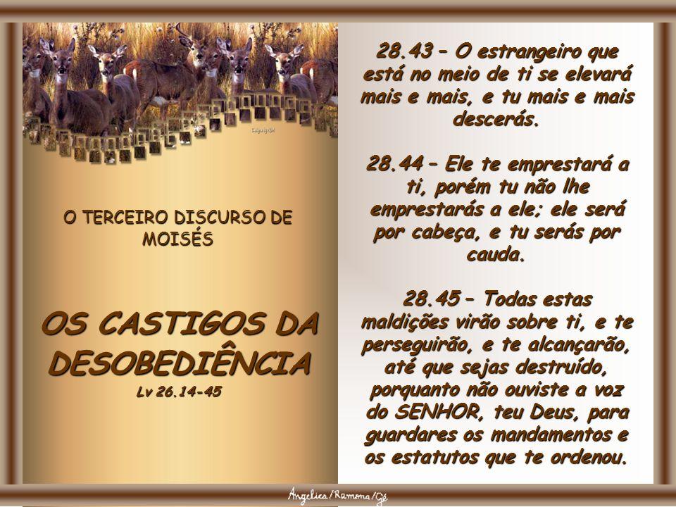O TERCEIRO DISCURSO DE MOISÉS OS CASTIGOS DA DESOBEDIÊNCIA Lv 26.14-45 28.39 – Plantarás e cultivarás muitas vinhas, porém do seu vinho não beberás, n