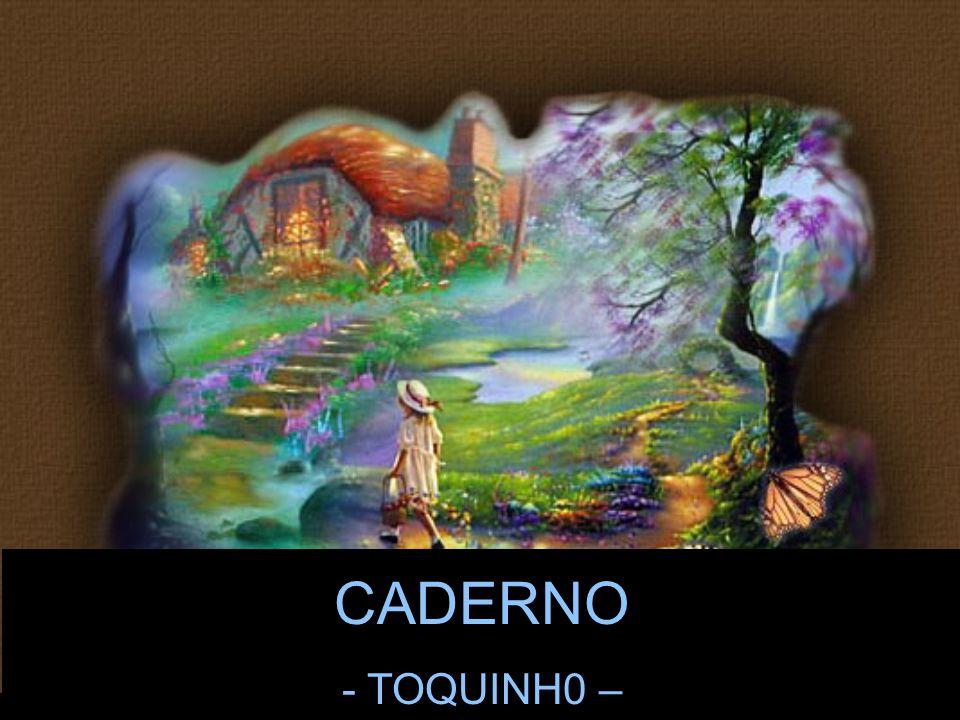 Jaime Barboza CADERNO - TOQUINH0 –