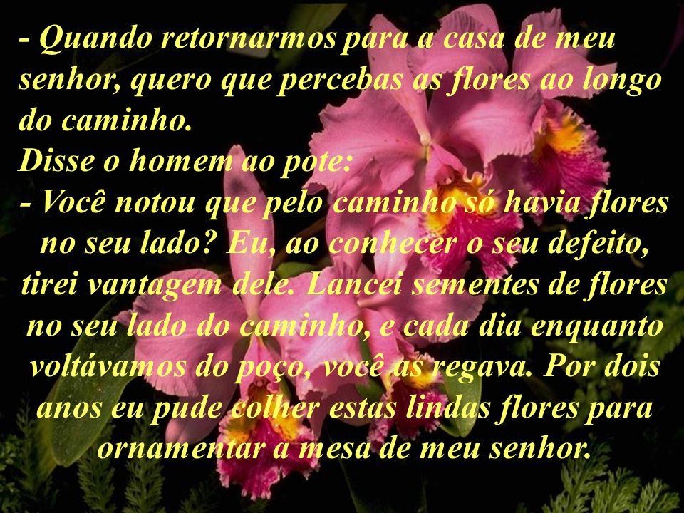 - Quando retornarmos para a casa de meu senhor, quero que percebas as flores ao longo do caminho.