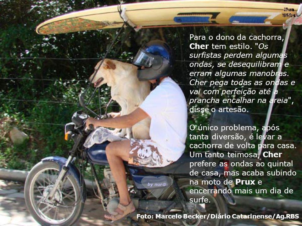Para ir de casa até a praia, o artesão improvisou uma estrutura na moto que lhe permite transportar a prancha e Cher. Ansiosa, a cachorra chega primei