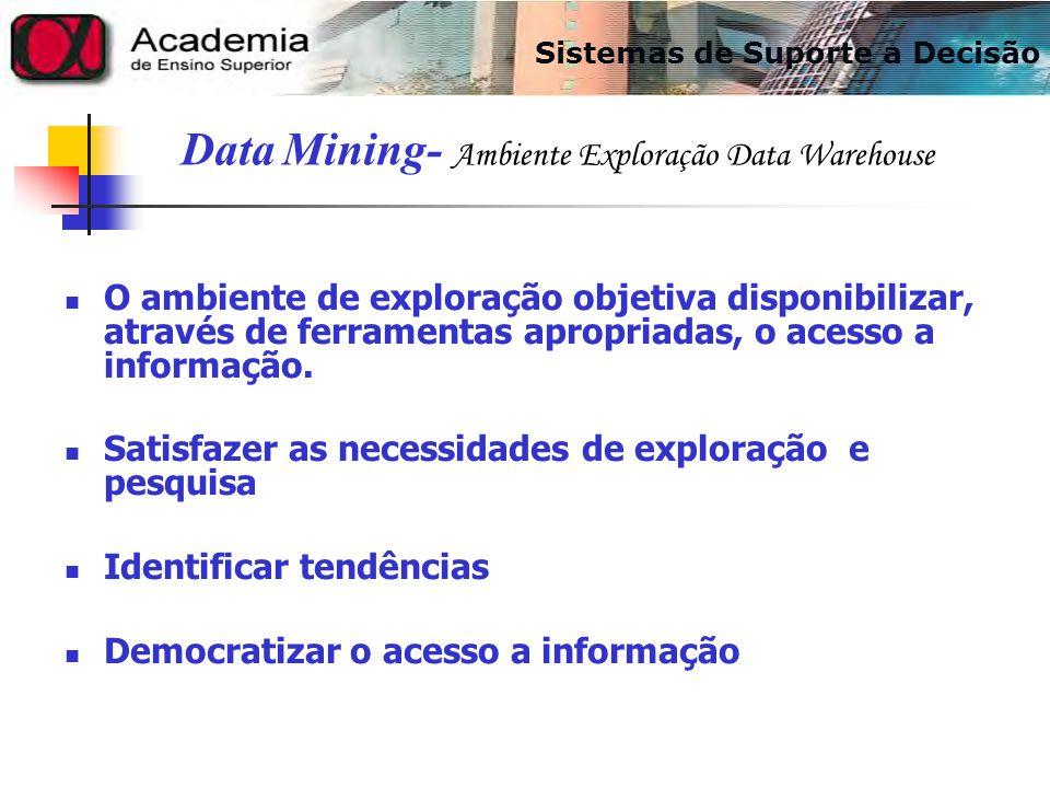 O ambiente de exploração objetiva disponibilizar, através de ferramentas apropriadas, o acesso a informação. Satisfazer as necessidades de exploração