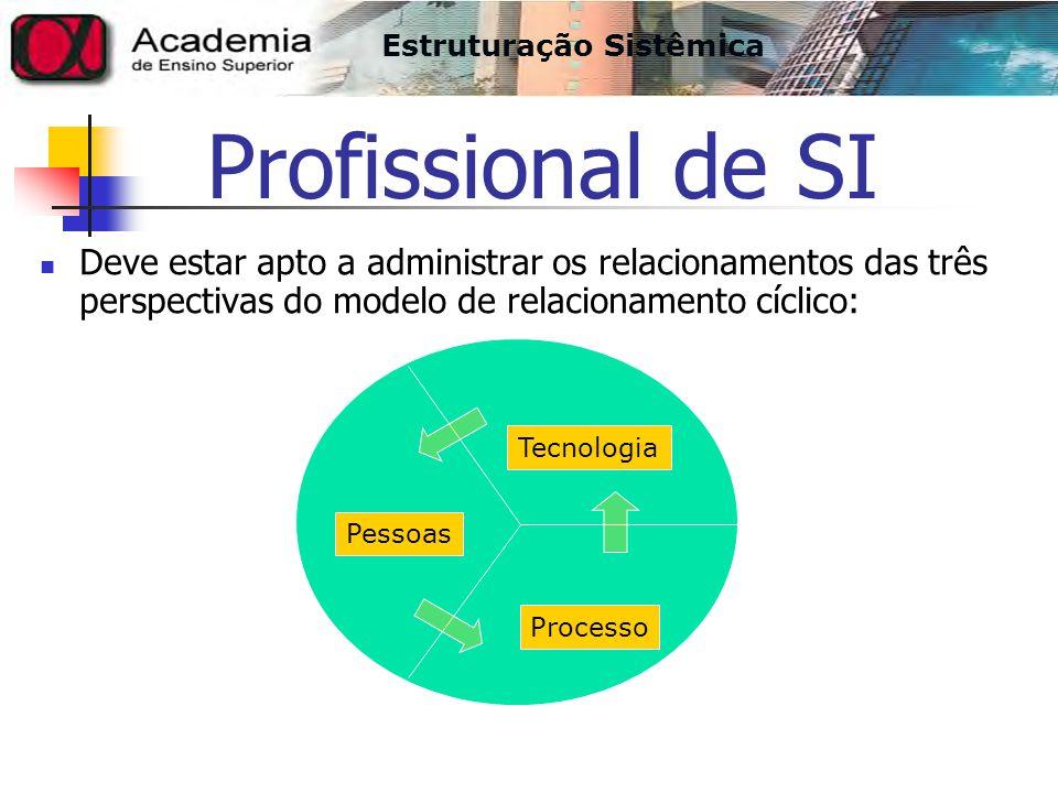 Profissional de SI Deve estar apto a administrar os relacionamentos das três perspectivas do modelo de relacionamento cíclico: Estruturação Sistêmica