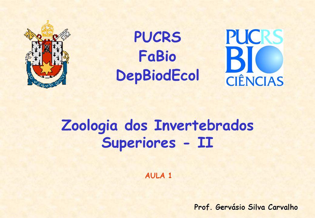 Zoologia dos Invertebrados Superiores - II PUCRS FaBio DepBiodEcol Prof.