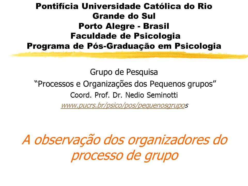 Pontifícia Universidade Católica do Rio Grande do Sul Porto Alegre - Brasil Faculdade de Psicologia Programa de Pós-Graduação em Psicologia Grupo de Pesquisa Processos e Organizações dos Pequenos grupos Coord.