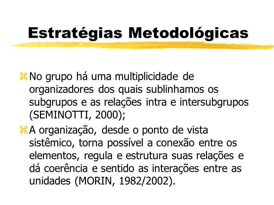 Estratégias Metodológicas zNo grupo há uma multiplicidade de organizadores dos quais sublinhamos os subgrupos e as relações intra e intersubgrupos (SEMINOTTI, 2000); zA organização, desde o ponto de vista sistêmico, torna possível a conexão entre os elementos, regula e estrutura suas relações e dá coerência e sentido as interações entre as unidades (MORIN, 1982/2002).