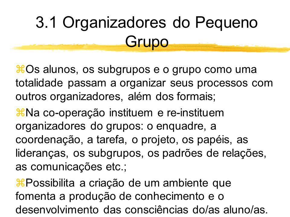 3.1 Organizadores do Pequeno Grupo zOs alunos, os subgrupos e o grupo como uma totalidade passam a organizar seus processos com outros organizadores, além dos formais; zNa co-operação instituem e re-instituem organizadores do grupos: o enquadre, a coordenação, a tarefa, o projeto, os papéis, as lideranças, os subgrupos, os padrões de relações, as comunicações etc.; zPossibilita a criação de um ambiente que fomenta a produção de conhecimento e o desenvolvimento das consciências do/as aluno/as.