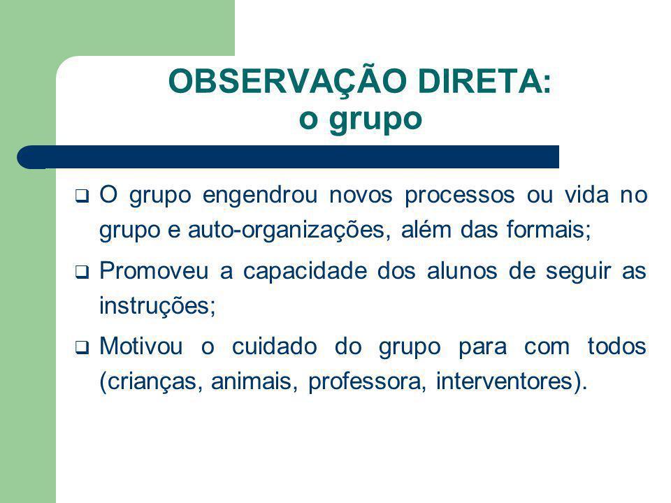 OBSERVAÇÃO DIRETA: o grupo O grupo engendrou novos processos ou vida no grupo e auto-organizações, além das formais; Promoveu a capacidade dos alunos