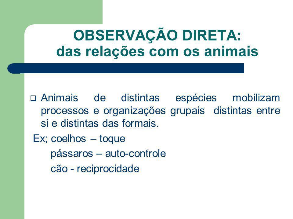 OBSERVAÇÃO DIRETA: das relações com os animais Animais de distintas espécies mobilizam processos e organizações grupais distintas entre si e distintas