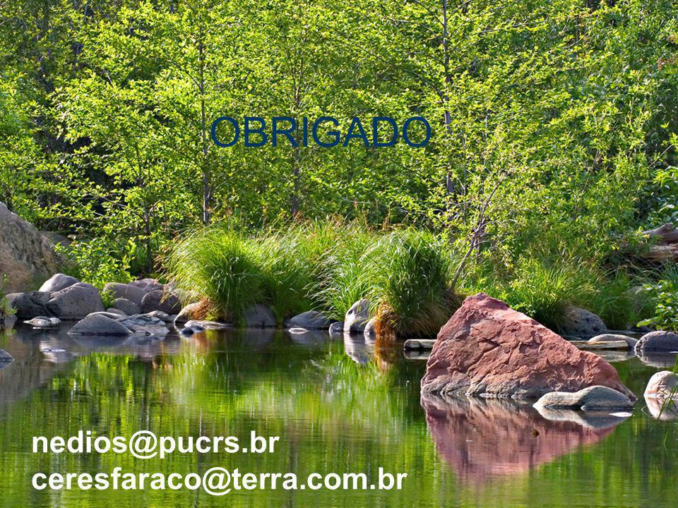 nedios@pucrs.br ceresfaraco@terra.com.br OBRIGADO