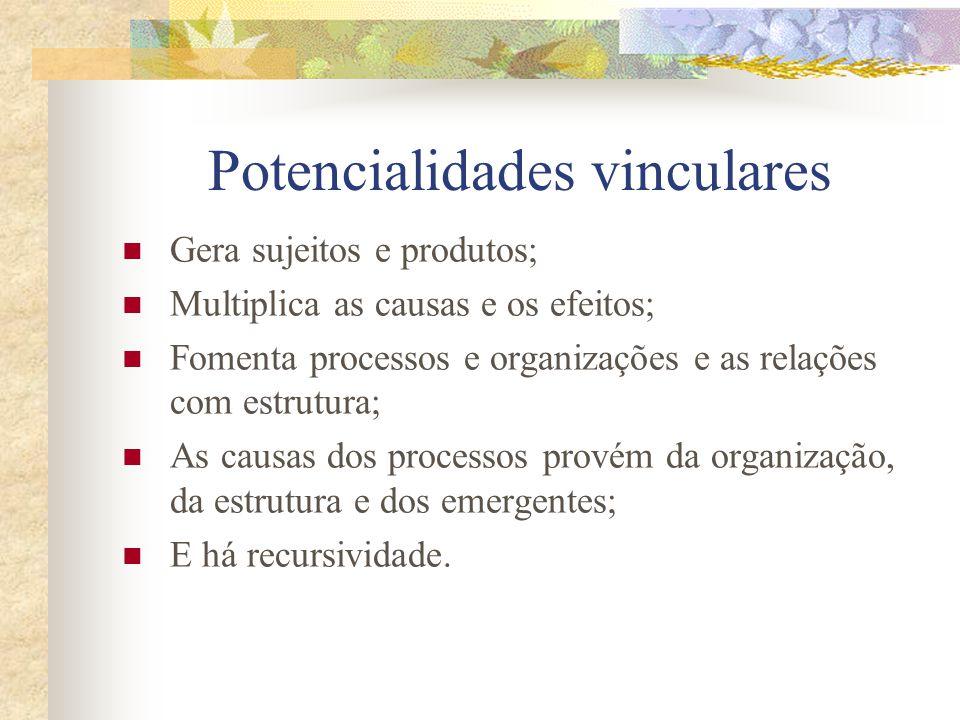 Potencialidades vinculares Gera sujeitos e produtos; Multiplica as causas e os efeitos; Fomenta processos e organizações e as relações com estrutura; As causas dos processos provém da organização, da estrutura e dos emergentes; E há recursividade.